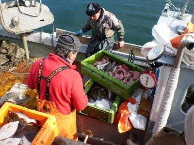 Integrierte Entwicklungsstrategie FLAG Fischerei AktivRegion Wagrien-Fehmarn