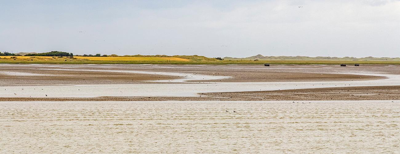 Nachhaltigkeitsmanagement Strand